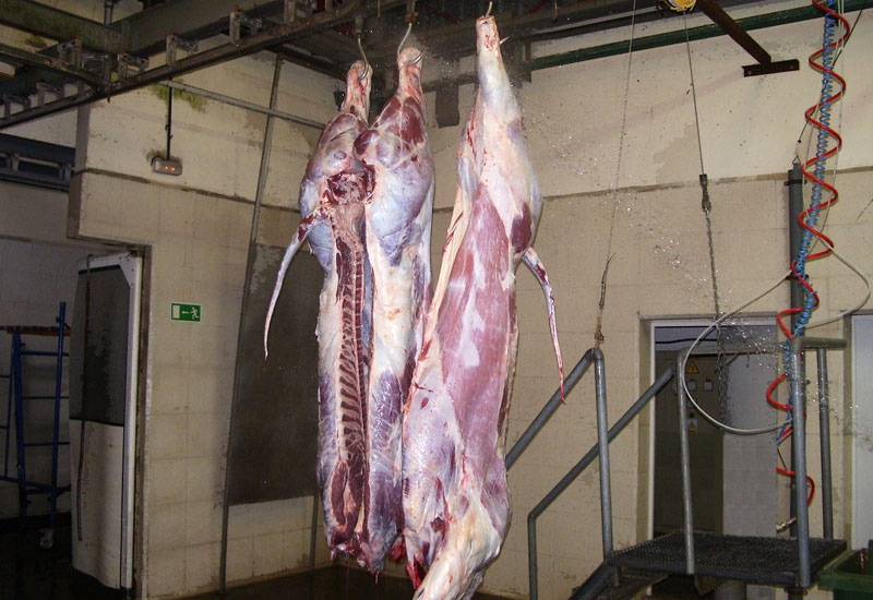 LIMPIEZA DE CANAL Mavicar matadero del polígono de las Arobias en Avilés