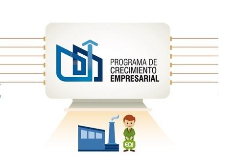 Federación de Polígonos Industriales de Asturias - PROGRAMA DE CRECIMIENTO EMPRESARIAL - Federación de Polígonos Industriales de Asturias
