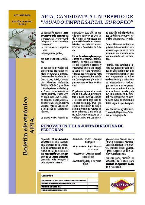 Federación de Polígonos Industriales de Asturias - Boletín Nº 3 Enero 2005 - Federación de Polígonos Industriales de Asturias
