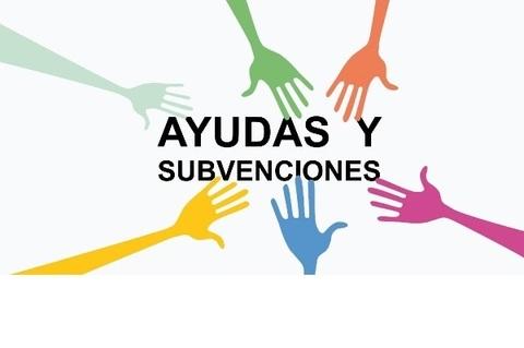 Federación de Polígonos Industriales de Asturias - AYUDAS INNOVA-IDEPA 2018 - Federación de Polígonos Industriales de Asturias