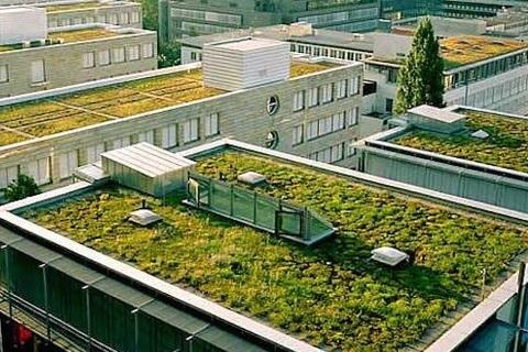 Federación de Polígonos Industriales de Asturias - LA LEGISLACIÓN FRANCESA OBLIGA A TENER TECHOS ECOLÓGICOS - Federación de Polígonos Industriales de Asturias
